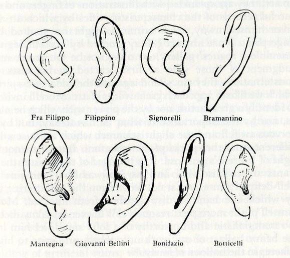 Giovanni Morelli's Ears